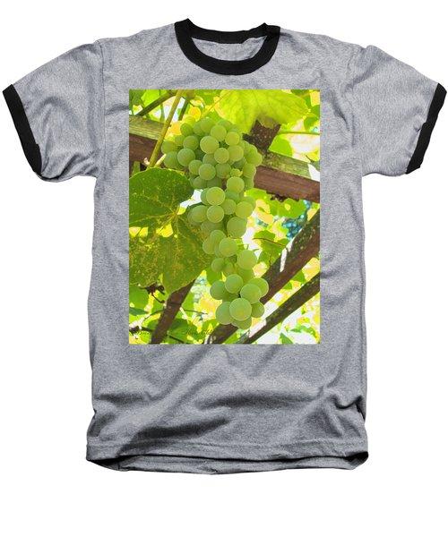 Fruit Of The Vine - Garden Art For The Kitchen Baseball T-Shirt by Brooks Garten Hauschild