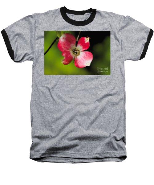 Fruit Tree Flower Baseball T-Shirt