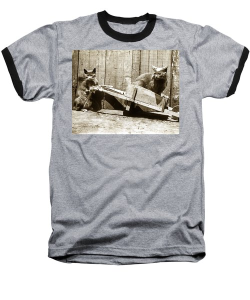 Baseball T-Shirt featuring the photograph Fun With Cats Henry King Nourse Photographer Circa 1900 by California Views Mr Pat Hathaway Archives