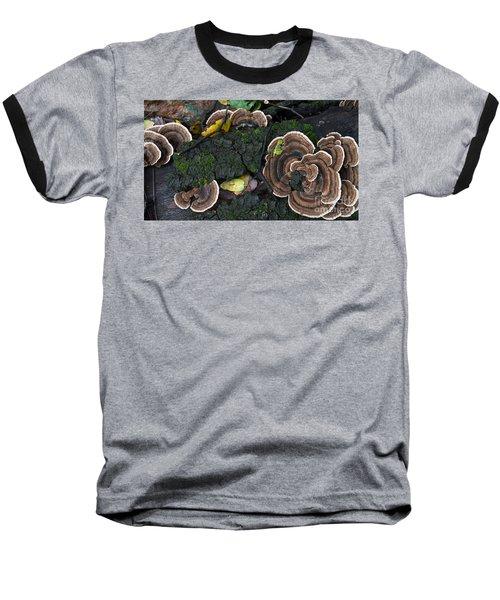 Fungi Contrast Baseball T-Shirt