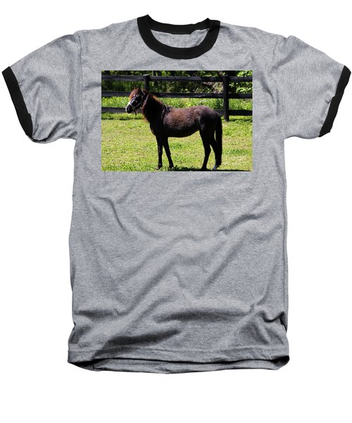 Furry Pony Baseball T-Shirt