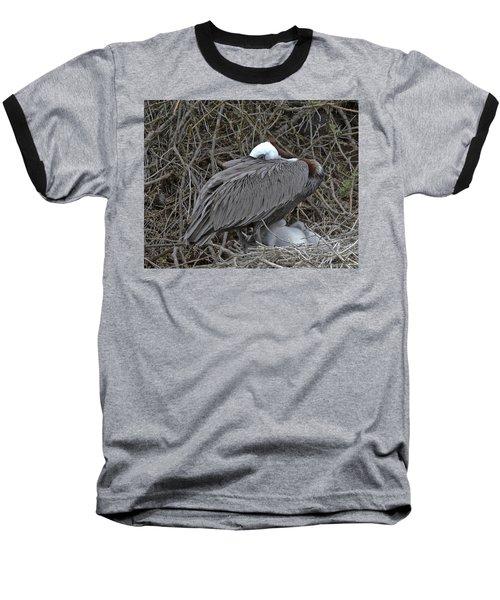 Galapagos - Watchful Pelican Baseball T-Shirt