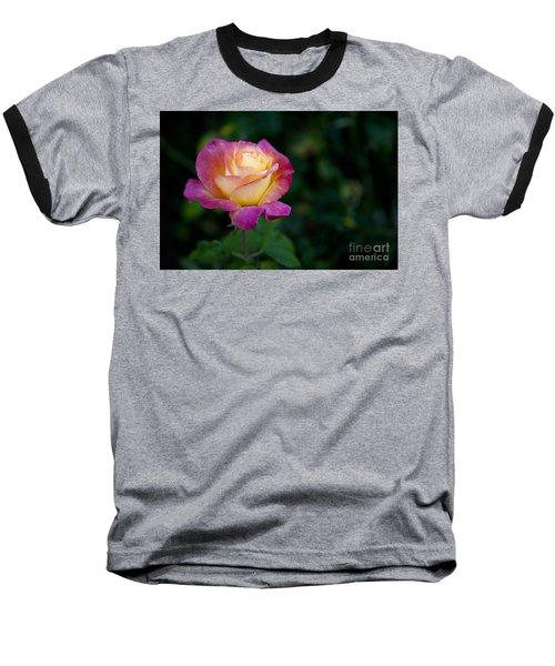 Garden Tea Rose Baseball T-Shirt by David Millenheft