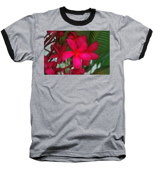 Baseball T-Shirt featuring the photograph Garden Treasures by Miguel Winterpacht