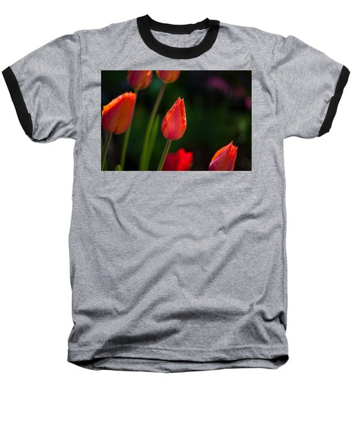 Garden Tulips Baseball T-Shirt