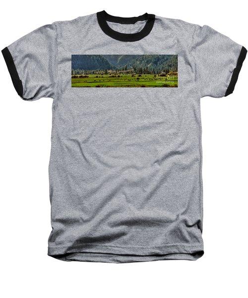 Baseball T-Shirt featuring the photograph Garden Valley Elk Herd by Sam Rosen