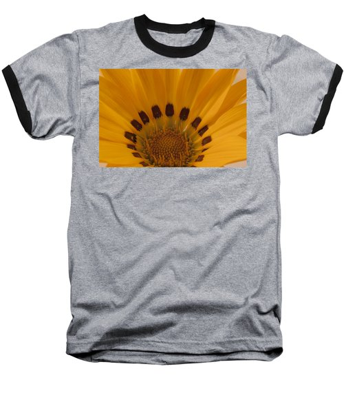 Gazania Stamen Macro Baseball T-Shirt by Sandra Foster