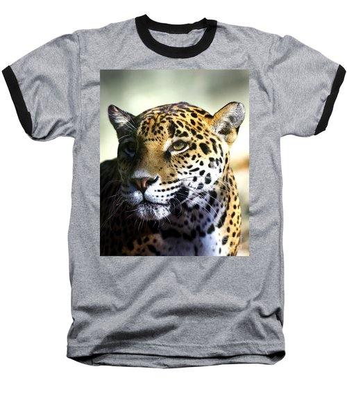 Gazing Jaguar Baseball T-Shirt by Liz Masoner