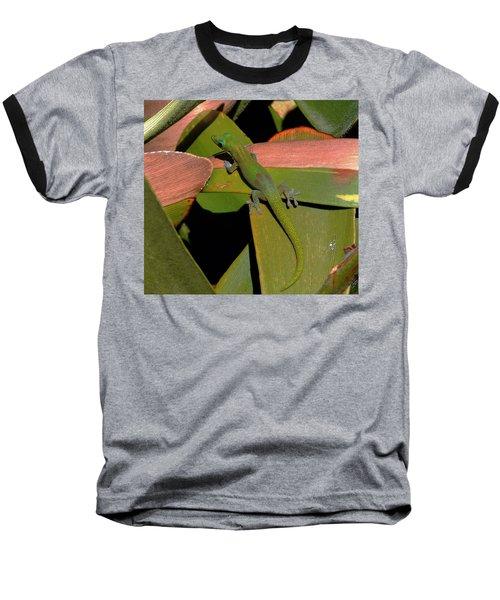 Gecko Baseball T-Shirt by Pamela Walton