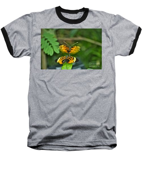 Baseball T-Shirt featuring the photograph Gentle Butterfly Courtship 03 by Thomas Woolworth