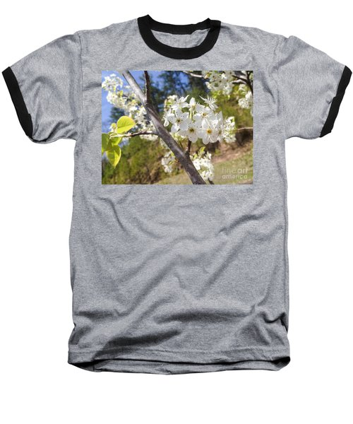 Georgia Blossoms Baseball T-Shirt