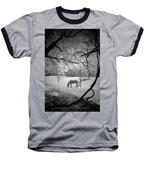 Baseball T-Shirt featuring the photograph Georgia Horses by Bradley R Youngberg