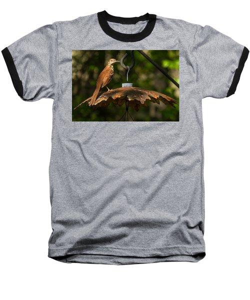 Baseball T-Shirt featuring the photograph Georgia State Bird - Brown Thrasher by Robert L Jackson