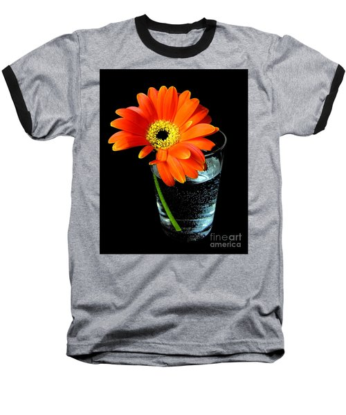 Baseball T-Shirt featuring the photograph Gerbera Daisy In Glass Of Water by Nina Ficur Feenan