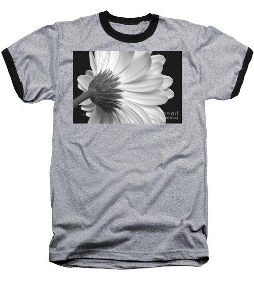 Gerbera Daisy Monochrome Baseball T-Shirt by Jeannie Rhode