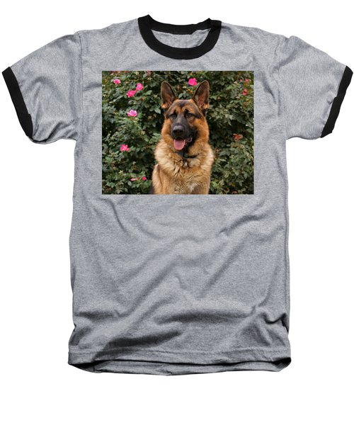 German Shepherd Dog Baseball T-Shirt