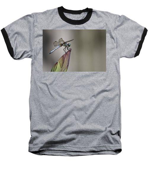 Get A Grip Baseball T-Shirt