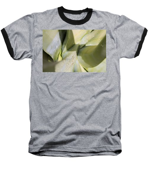 Giant Agave Abstract 3 Baseball T-Shirt