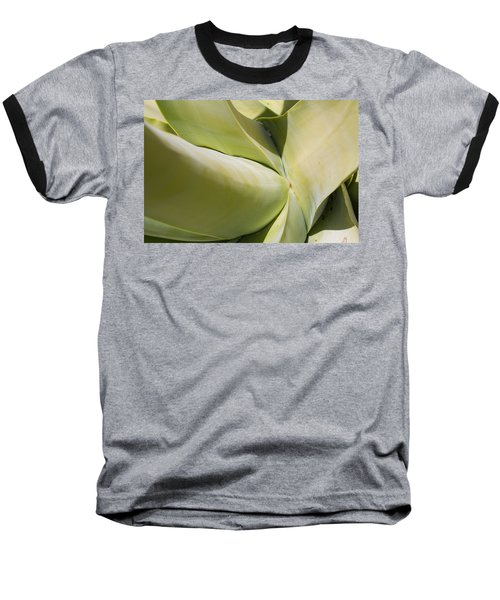 Giant Agave Abstract 9 Baseball T-Shirt