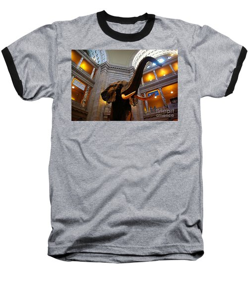 Baseball T-Shirt featuring the photograph Giant Elephant  by John S