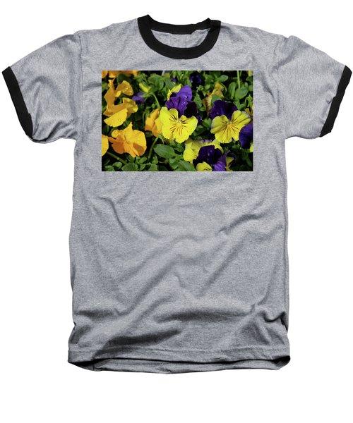 Giant Garden Pansies Baseball T-Shirt by Ed  Riche