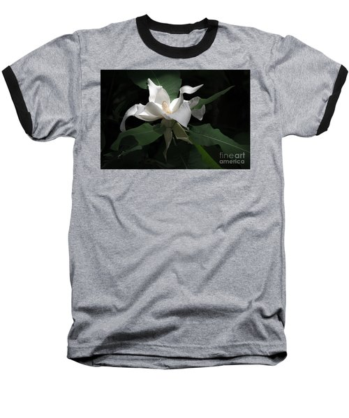 Giant Magnolia Baseball T-Shirt