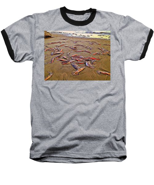 Baseball T-Shirt featuring the photograph Giant Squid Capitola Beach by Antonia Citrino