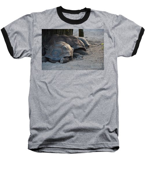 Baseball T-Shirt featuring the photograph Giant Tortise by Robert Meanor