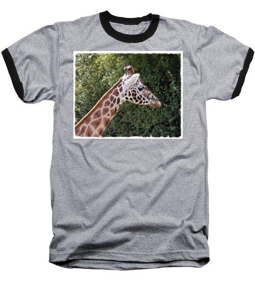 Giraffe 01 Baseball T-Shirt