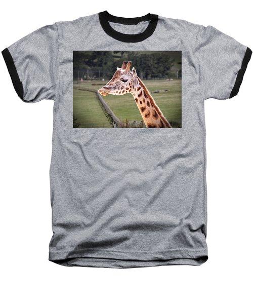 Giraffe 02 Baseball T-Shirt
