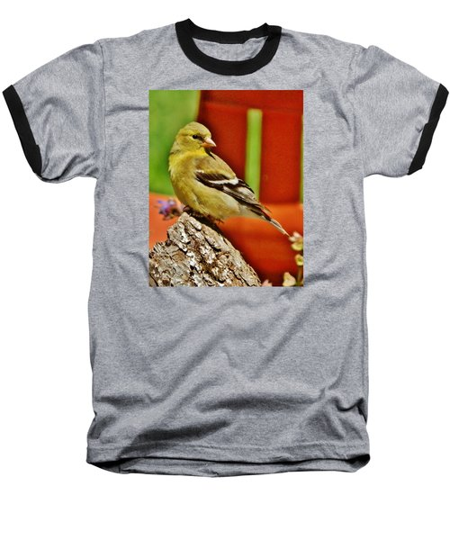 Baseball T-Shirt featuring the photograph Girlie Goldfinch by VLee Watson