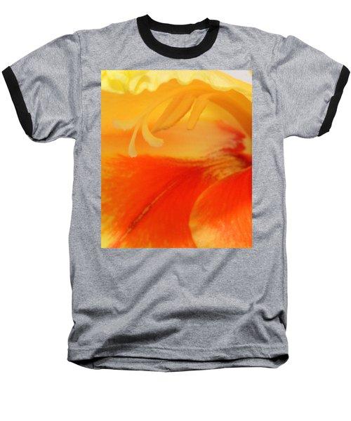 Gladiola Hello Baseball T-Shirt