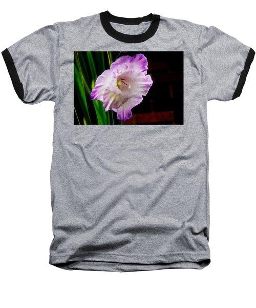 Gladiolus - Summer Beauty Baseball T-Shirt by Tom Culver