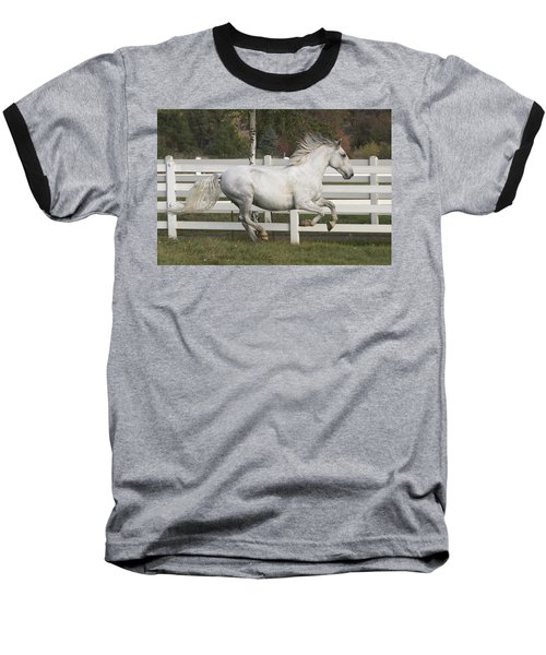 Glorious Gunther Baseball T-Shirt by Wes and Dotty Weber