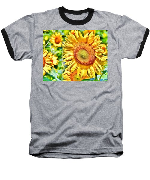 Glorious Sunflowers Baseball T-Shirt