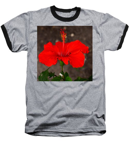 Glowing Red Hibiscus Baseball T-Shirt