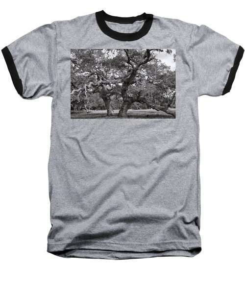Gnarly Tree  Baseball T-Shirt