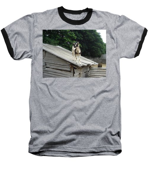 Goat On The Roof Baseball T-Shirt