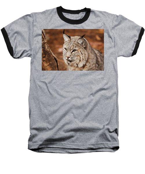 God I'm Handsome Baseball T-Shirt by Lori Tambakis