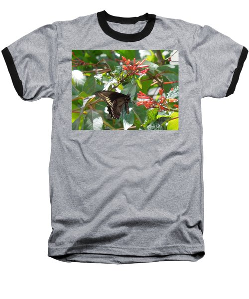 Baseball T-Shirt featuring the photograph Gold Rim Swallowtail by Ron Davidson