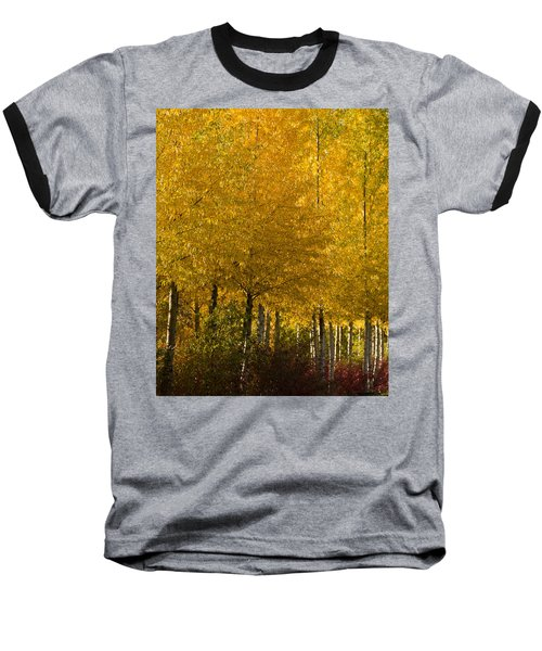 Baseball T-Shirt featuring the photograph Golden Aspens by Don Schwartz