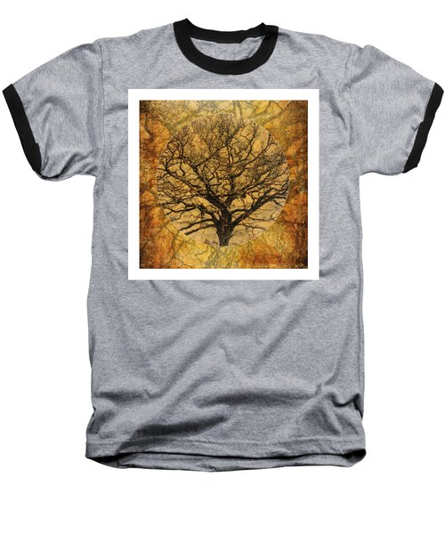 Golden Autumnal Trees Baseball T-Shirt