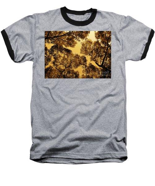Golden Camphor Baseball T-Shirt