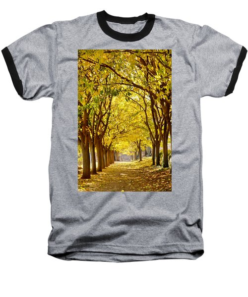 Golden Canopy Baseball T-Shirt