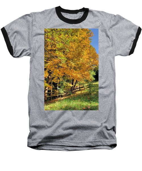 Baseball T-Shirt featuring the photograph Golden Fenceline by Gordon Elwell