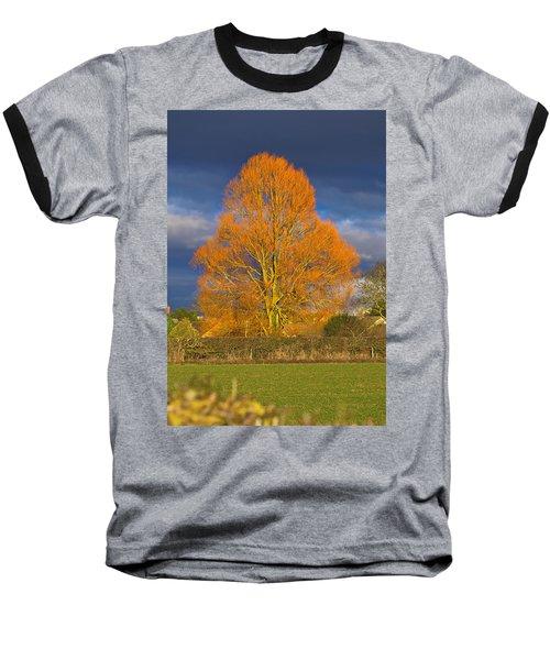 Golden Glow - Sunlit Tree Baseball T-Shirt