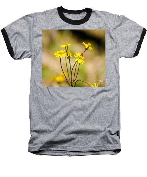 Golden Ragwort Baseball T-Shirt