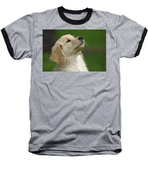 Golden Retriever Puppy Baseball T-Shirt