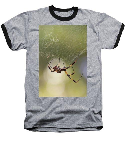 Golden-silk Spider Baseball T-Shirt
