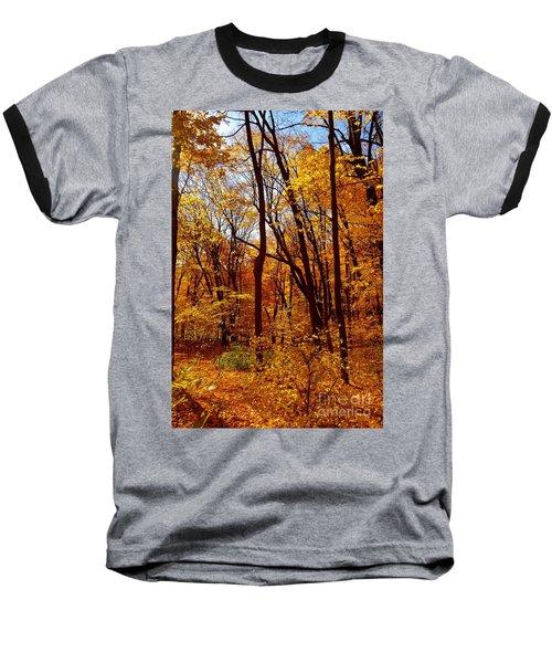 Golden Splendor Baseball T-Shirt by Jacqueline Athmann